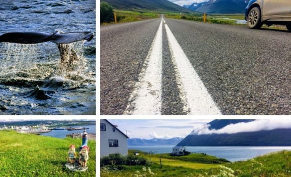 Arctic Coast Way North Iceland
