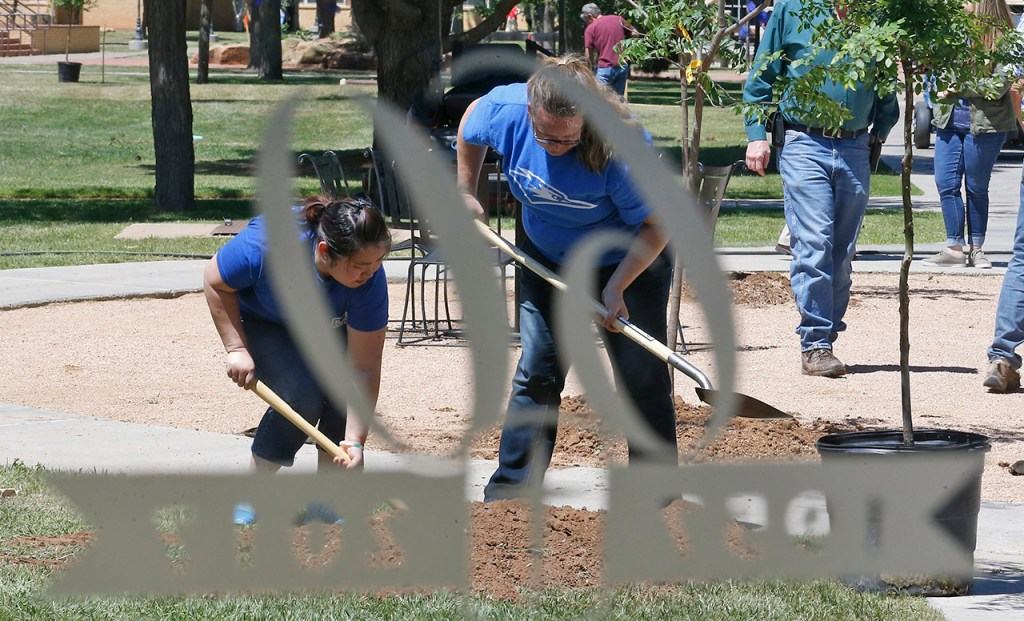 Ling Lee, left, and Lissa Gilliam, right, remove dirt from a hole during an Arbor Day and anniversary celebration Wednesday, April 26, 2017, at Lubbock Christian in Lubbock, Texas. The school is planting 60 trees to celebrate the 60th anniversary.