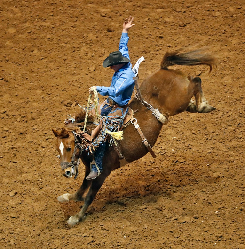 Josh Davison, from Miles City, Mont., rides on the saddle bronc during the ABC Pro Rodeo, Saturday, March 31, 2018, at Municipal Coliseum in Lubbock, Texas. [Brad Tollefson/A-J Media]