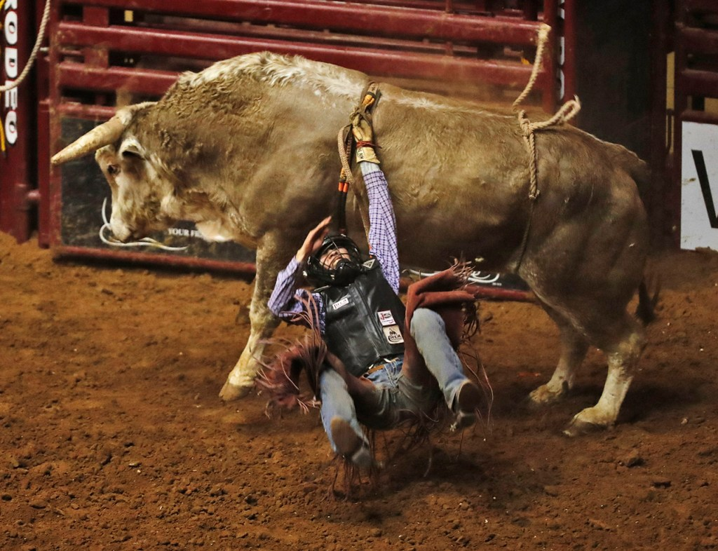 Clay Wagner, from Round Rock, Ariz., falls off the bull during the ABC Pro Rodeo, Saturday, March 31, 2018, at Lubbock Municipal Coliseum in Lubbock, Texas. [Brad Tollefson/A-J Media]