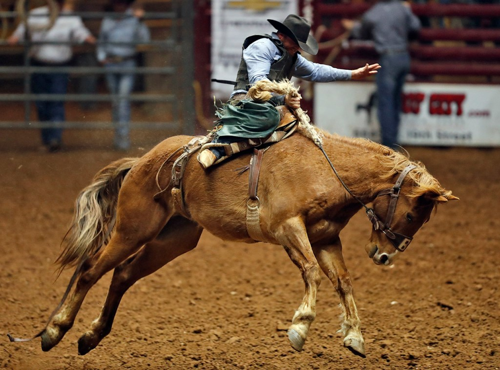 Dean Wadsworth, from Ozona, Texas, holds onto the reigns in the bareback riding competition during the ABC Pro Rodeo, Saturday, March 31, 2018, at Lubbock Municipal Coliseum in Lubbock, Texas. [Brad Tollefson/A-J Media]