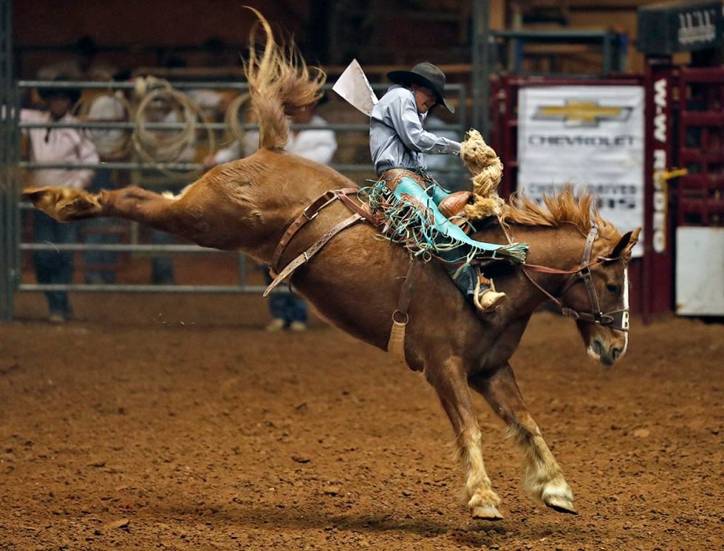 Colt Gordon, from Comanche, Okla., holds onto the reigns in the bareback riding competition during the ABC Pro Rodeo, Saturday, March 31, 2018, at Lubbock Municipal Coliseum in Lubbock, Texas. [Brad Tollefson/A-J Media]
