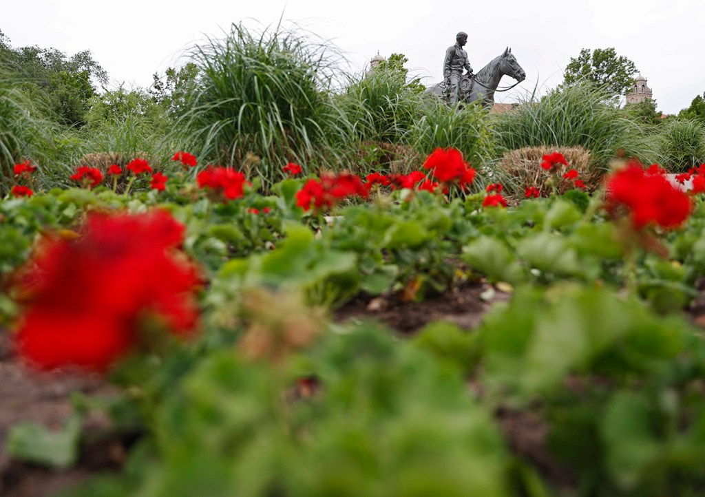 The statue of Will Rogers and Soapsuds is surrounded by flowers after the Arbor Day plantings Monday, April 29, 2019, in Lubbock, Texas. [Brad Tollefson/Lubbock Avalanche-Journal]