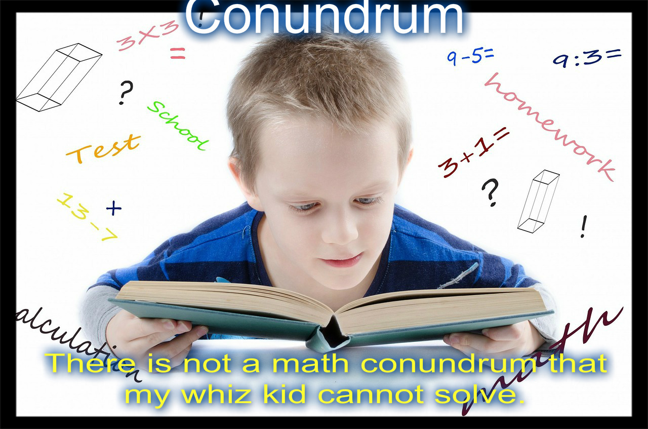 conundrum visual meaning definition sentence