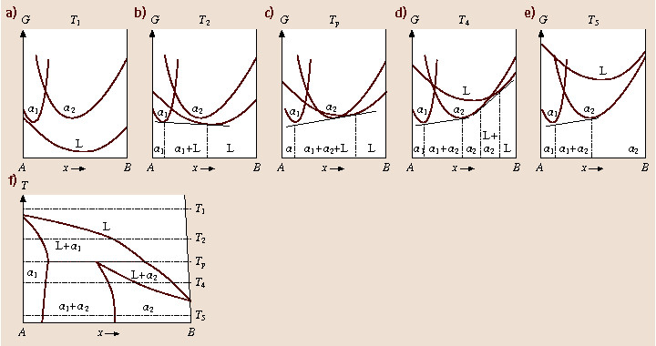 Gibbs free energy curves and phase diagrams for eutectic and gibbs free energy curves and phase diagrams for eutectic and peritectic systems ccuart Image collections