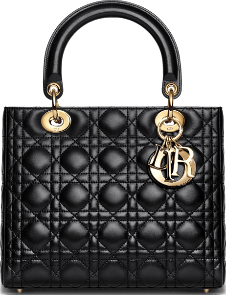 Image result for classic dior lady bag