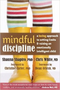 Top 10 Books On Discipline And Parenting