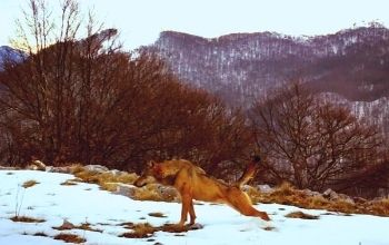 documentario-sui-monti-prenestini