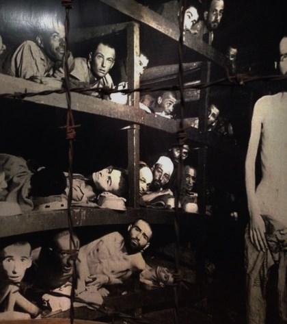 holocaust 16