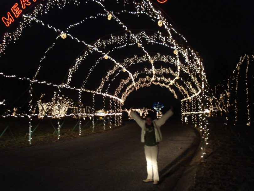 Belleville Illinois Way of Lights