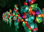 Review: Why the Chinese Lantern Festival in Albuquerque New Mexico is Worth Checking Out