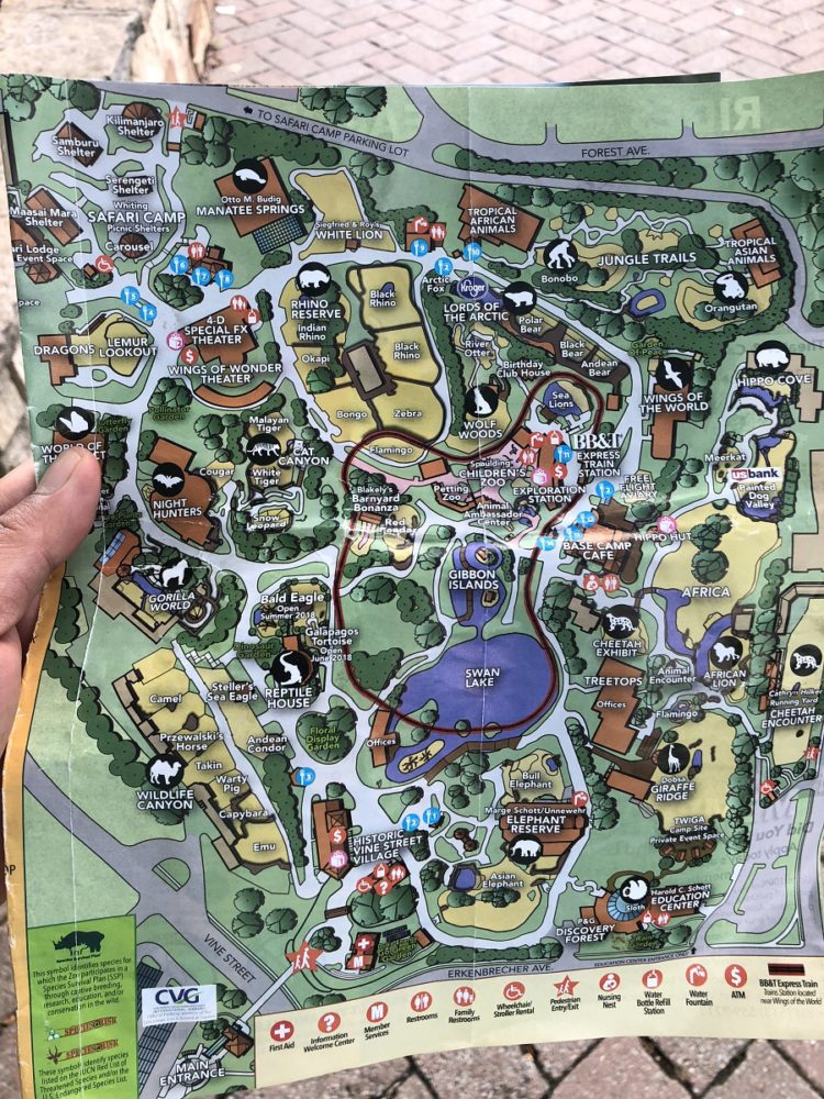 When is the Best Time to Visit Cincinnati Zoo and Botanical Garden Cincinnati Zoo Map on