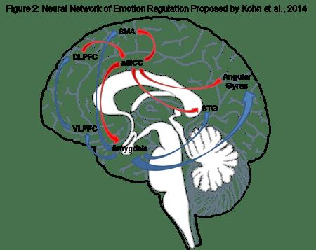 emotieregulatie