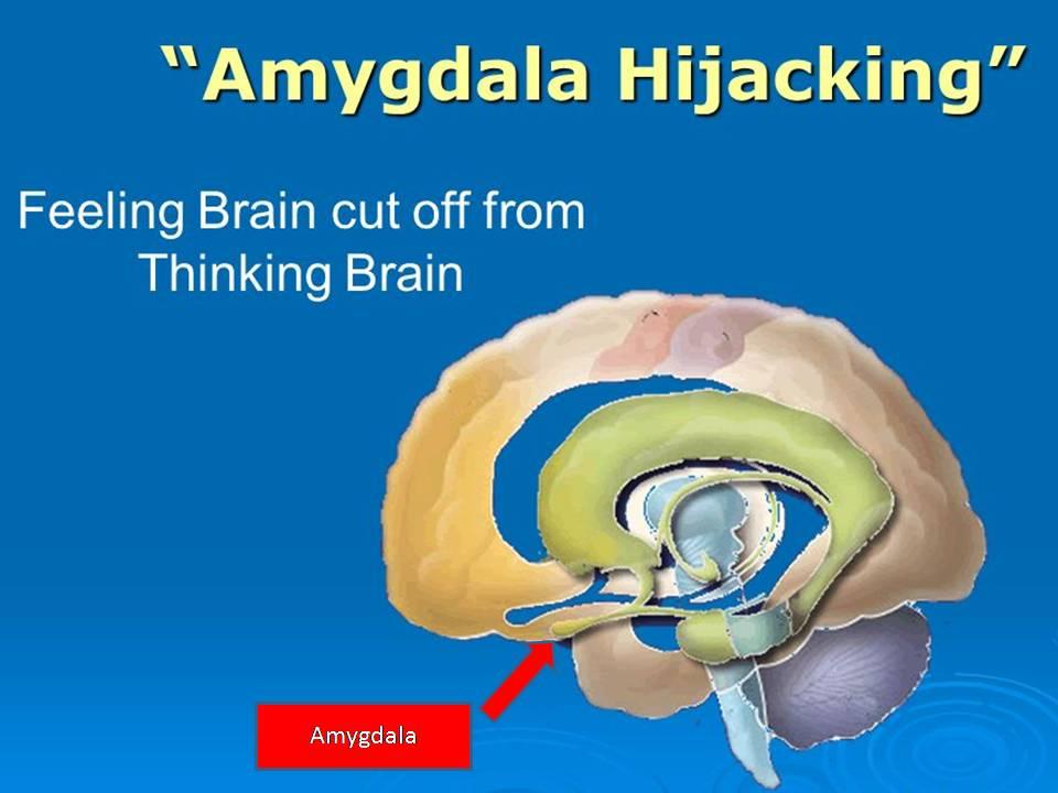 Emotional (Amygdala) Hijack