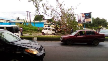 8 Escape Death As A Huge Tree Falls On Commercial Bus In Cross River