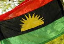 MASSOB, South East Youths Back Out Of IPOB Sit-at-home Directive