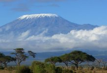 Facts You Need To Know About The Highest Mountain In Africa, Mount Kilimanjaro