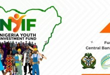 10 Things You Need To Take Note Of 2020 Nigeria Youth Investment Fund