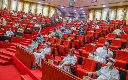 Senate Set To Screen Buratai, Others As Ambassadors As Presidency Justifies Lobbying