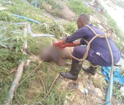 See Photos As The Body Of 17-Year-Old Girl Is Recovered In Kwara River