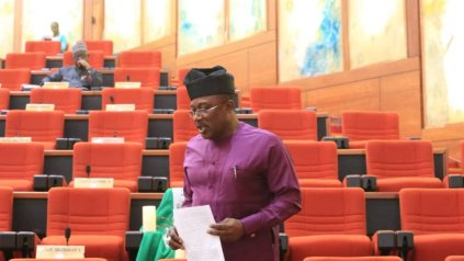 We Need To Look For Foreign Support Over Insecurity - Senator Smart Adeyemi