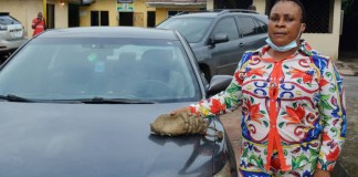 See Photos As Fake Lawyer Is Apprehended In Imo