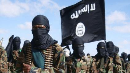 How Ansaru Terrorists Killed 30 Bandits In Kaduna