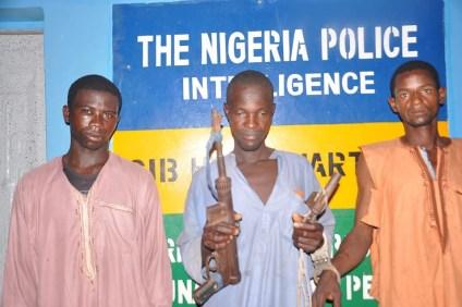 Police Arrest 3 Cattle Rustlers, Recover Guns, Cows In Adamawa