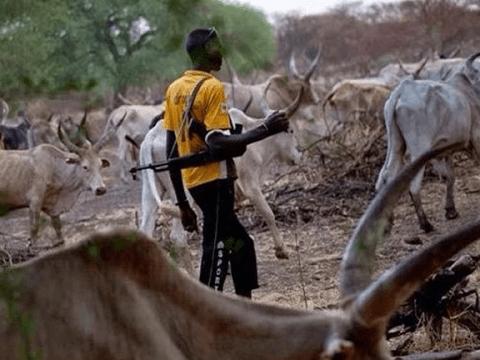 Suspected Herdsmen Killed 16 People In Fresh Benue Attack