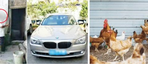 50-year-old Farmer Arrested For Stealing Chickens To Buy Fuel For His N140m BMW Car