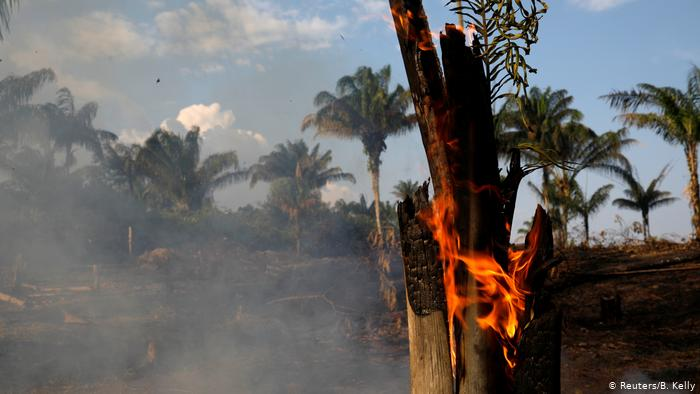 Leaders Pressure Brazil To Quell 'International Crisis' Over Amazon Wildfires