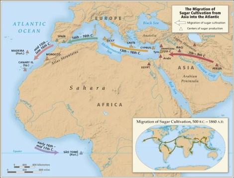 the transatlantic slave trade pdf