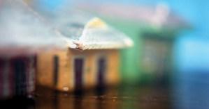 Hurricane Story: A Haunting Analog Photo-Memoir of Katrina, Partway Between Nightmare and Fairy Tale