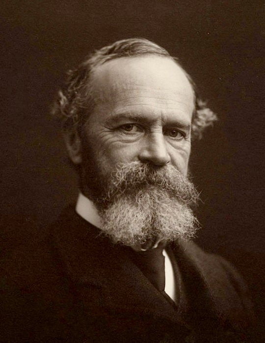 william james the self