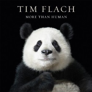 More Than Human: Tim Flach's Striking Portraits of Animals
