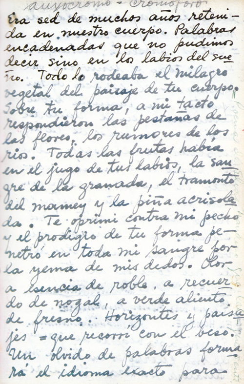 Frida Kahlo s Passionate Hand Written Love Letters to Diego Rivera