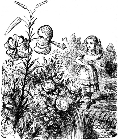 The Alice In Wonderland Cookbook And Lewis Carroll S Guide To Dining Etiquette Brain Pickings