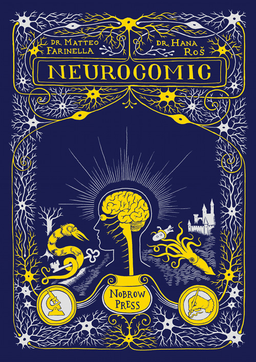 Neurocomic: A Graphic Novel About How the Brain Works