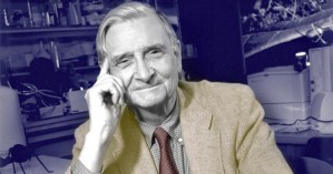 E.O. Wilson on How We Give Meaning to Life