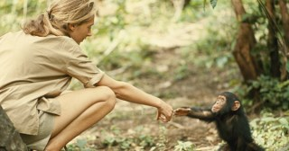 How a Dream Came True: Young Jane Goodall's Exuberant Letters and Diary Entries from Africa