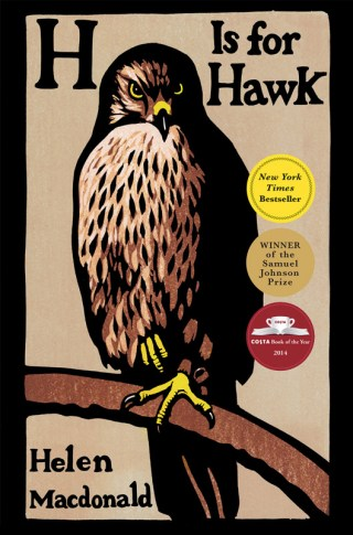 Lessons on Love and Loss, Beauty and Terror, Control and Surrender from a Bird of Prey