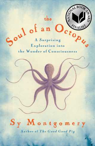 The Soul of an Octopus: How One of Earth's Most Alien Creatures Illuminates the Wonders of Consciousness