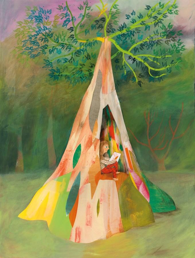 Rainbow Tree (Mindanao Gum Tree)