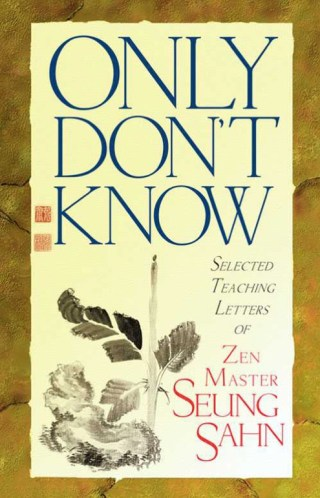 Just-Like-That Mind: A Great Zen Teacher on Navigating Loss and Grief