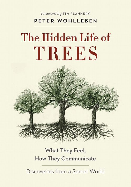 The Secret Life of Trees: The Astonishing Science of What Trees Feel and How They Communicate