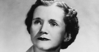 A Bioluminescent Wonder: Rachel Carson on the Art of Illuminating Nature Beyond Scientific Fact
