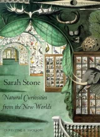 Trailblazing 18th-Century Artist Sarah Stone's Stunning Natural History Paintings of Exotic, Endangered, and Extinct Species