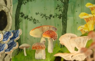 The Mushroom Hunters: Neil Gaiman's Subversive Feminist Celebration of Science and the Human Hunger for Truth, in a Gorgeous Animated Short Film
