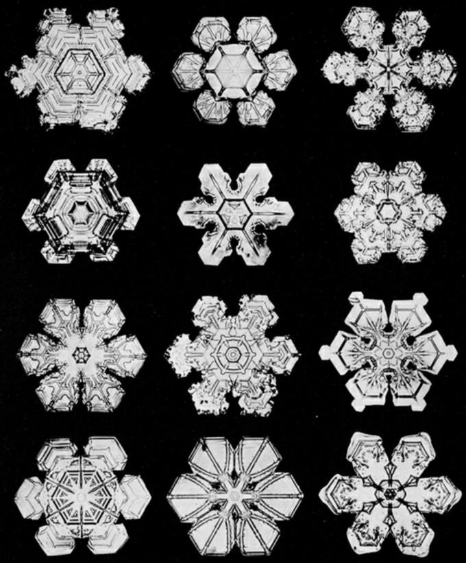wilsonbentley_snowflakes10.jpg?resize=680%2C821