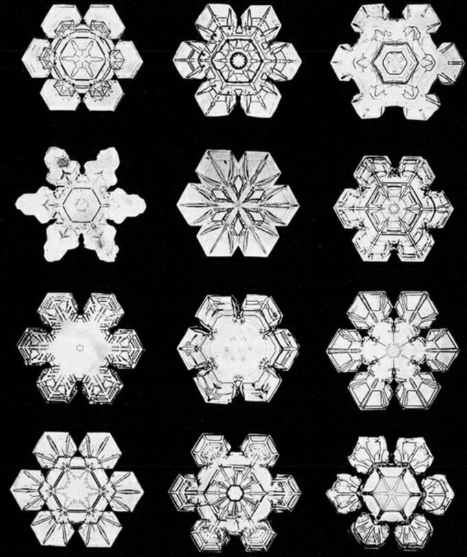 wilsonbentley_snowflakes11.jpg?resize=680%2C811